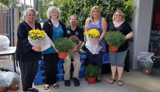 Selling mums to raise money for food pantry